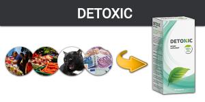 Detoxic – Jak Očistit Své Tělo od Parazitů