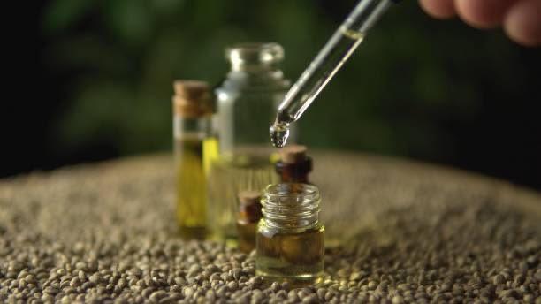 konopný olej, konopná semena